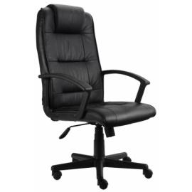 Kancelářská židle Aloe