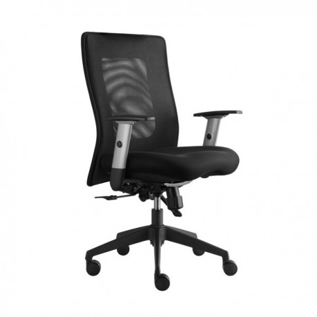 Kancelářská židle Lexa Alba - Klasik
